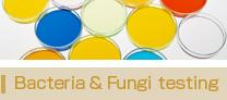 Bacteria & Fungi testing